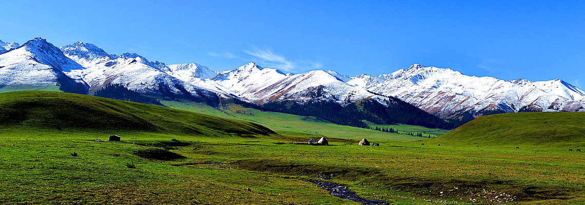 Xinjiang Travel to Grassland