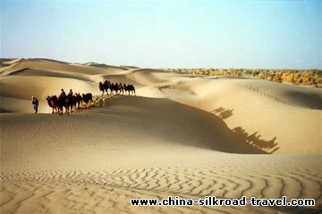 5 Days Xinjiang Impression Highlights