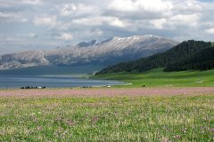 The Sayram Lake